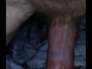 small lil hairy pussy